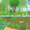 Pond ecosystem (trophic relationship)